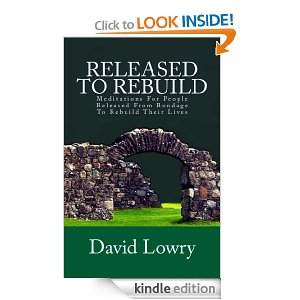 Released To Rebuild by David Lowry