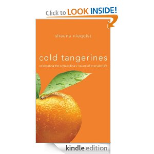 Cold Tangerines: Celebrating the Extraordinary Nature of Everyday Life by Shauna Niequist