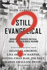 Still Evangelical?- Insiders Reconsider Political, Social, and Theological Meaning