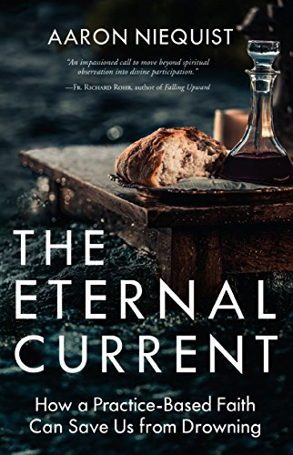 The Eternal Current: How a Practice: Based Faith Can Save Us from Drowning by Aaron Niequis